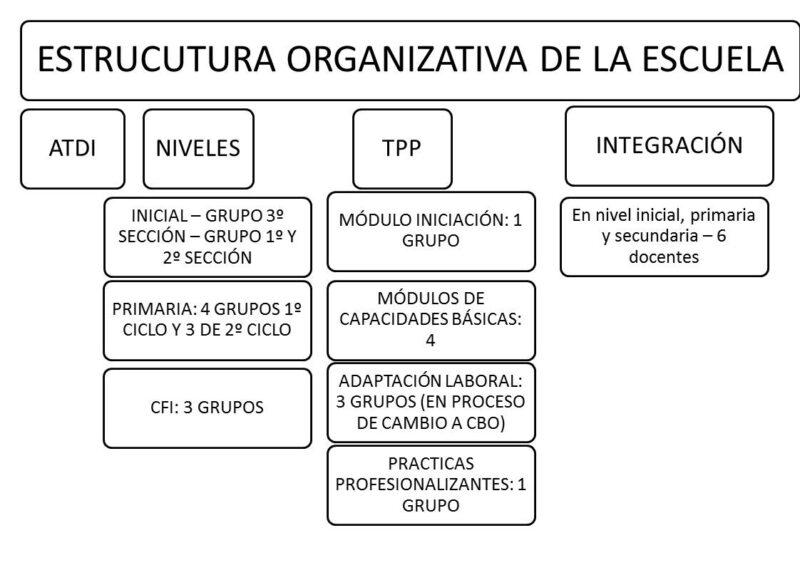 Estructura Organizativa de la Escuela